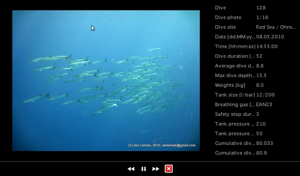 Dive viewer screen